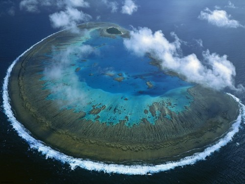 "flyerizer:"" LADY MUSGRAVE ISLAND  coordinates: 23°54′30″S, 152°23′39″E"""