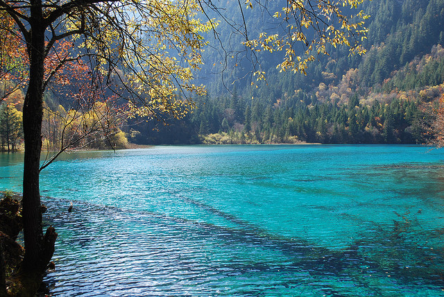Jiuzhaigou Valley - Sichuan, China.
