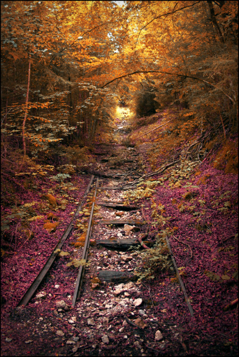 Abandoned Railroad, Lebanon, Missouri