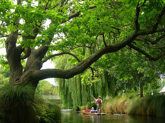 by laser_livesey on Flickr.Punting on the River Avon in Christchurch, New Zealand.