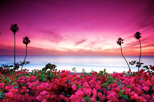 Seaside Sunset, San Clemente, California