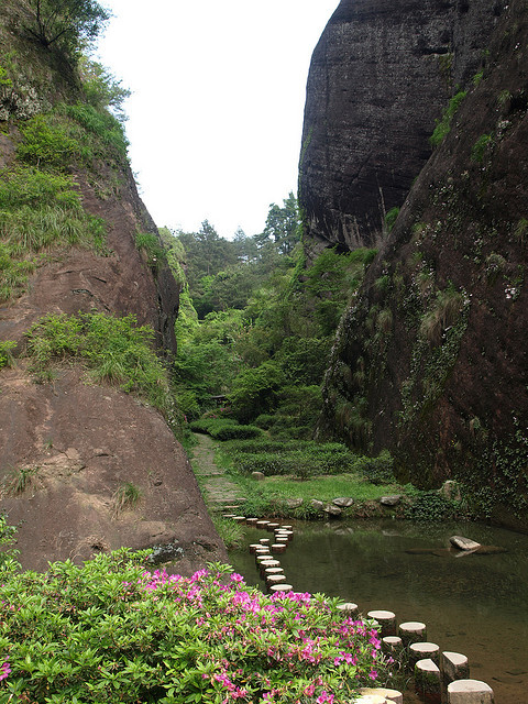 Path between cliffs and tea plants in Wuyishan, China