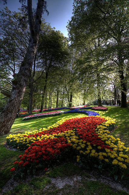 Colours of Keukenhof Gardens, Lisse, Netherlands