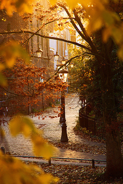 Lanterns, Utrecht, The Netherlands