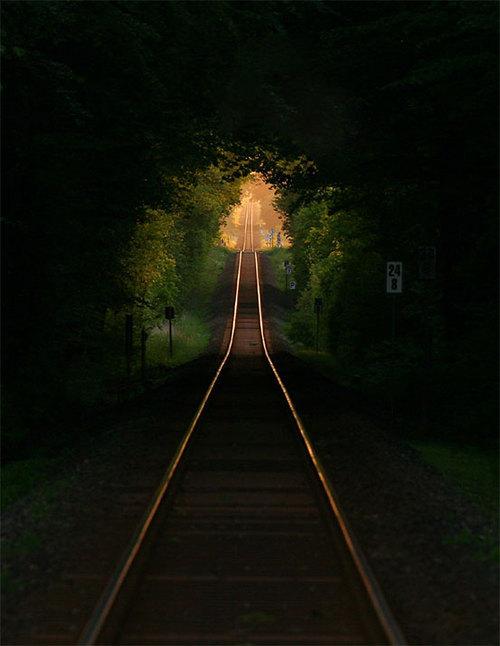 Railroad Tree Tunnel, France