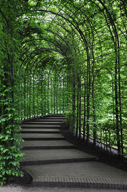 Passage in the garden at Alnwick Castle, Northumberland, England