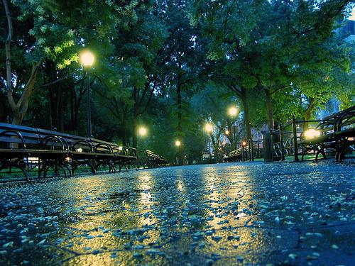 Rainy Night, Central Park, New York City