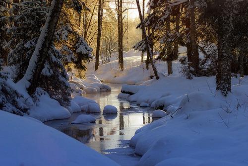 Winter Stream, Finland
