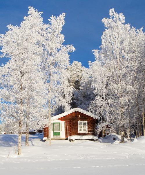 Pjesker, Sweden