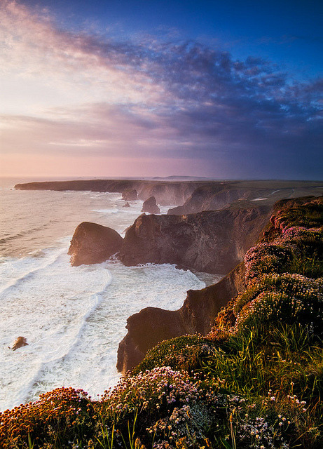 Sunset over flower covered cliffs at Giant Steps in Cornwall, England