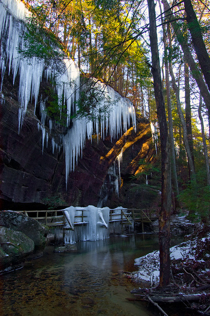Ice curtains in Dismals Canyon, Alabama / USA