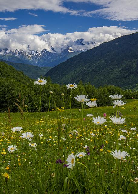 Summertime in the Caucasus, Svaneti / Georgia