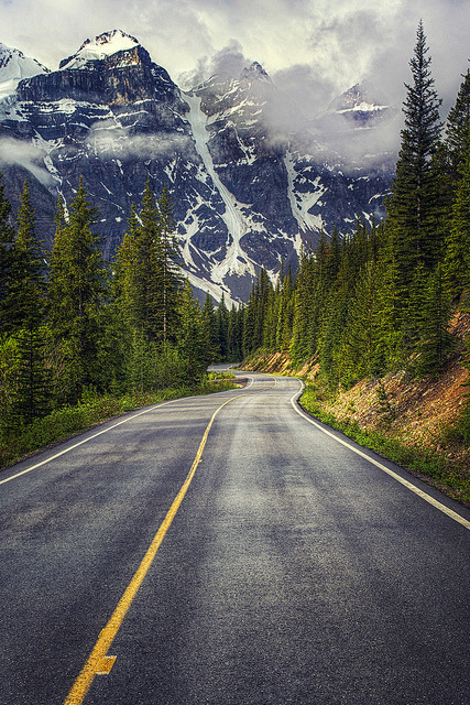 The road to Moraine Lake in Banff National Park / Canada