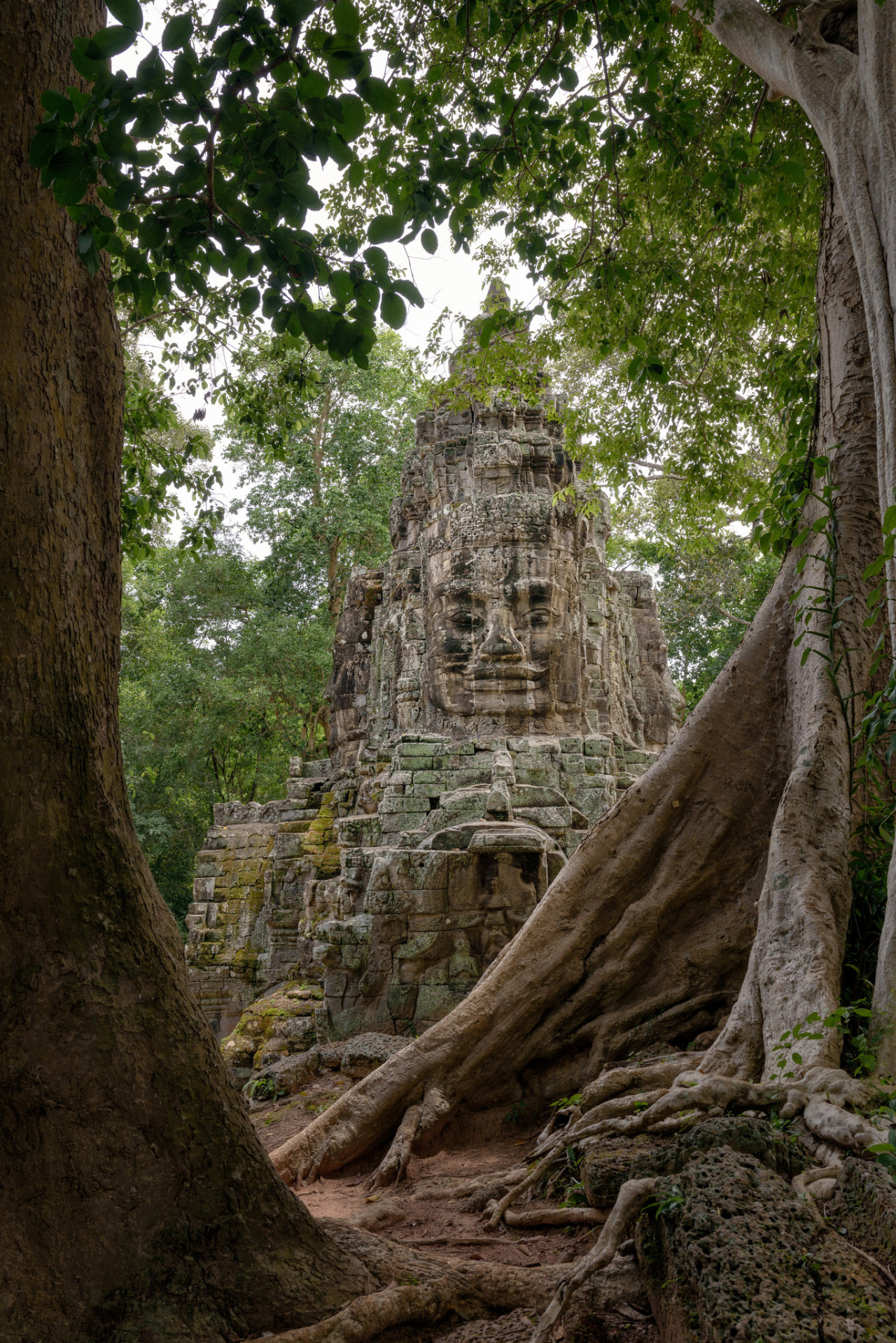 Hidden faces of Siem Reap / Cambodia