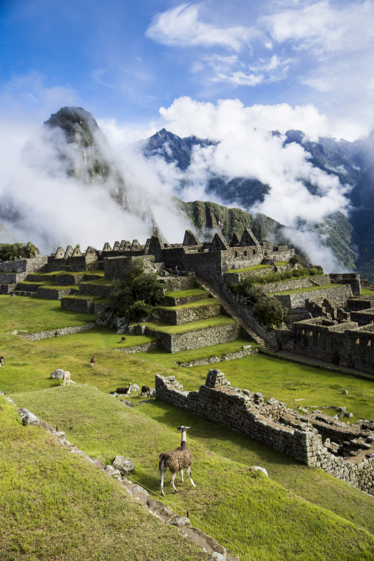 Machu Picchu up in the clouds / Peru